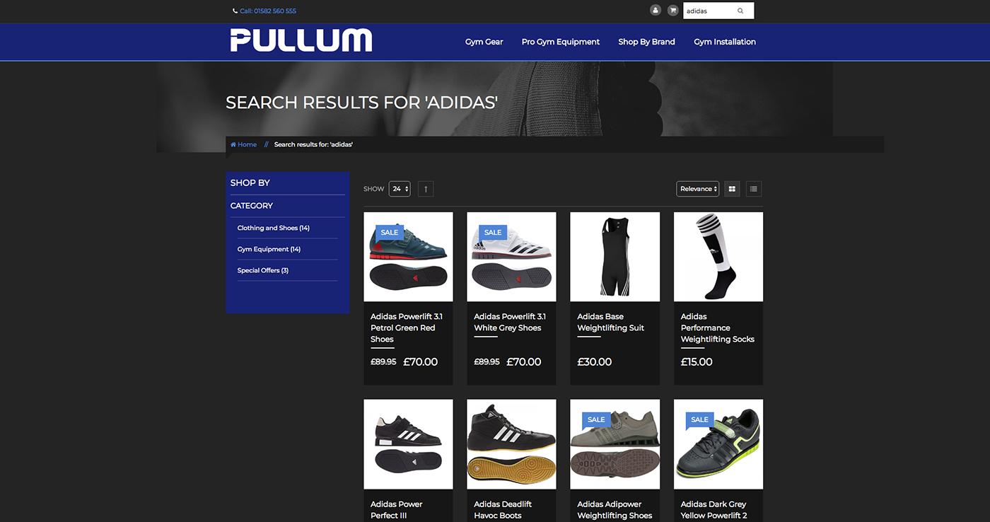 54a90275a4 Pullum Sports case study