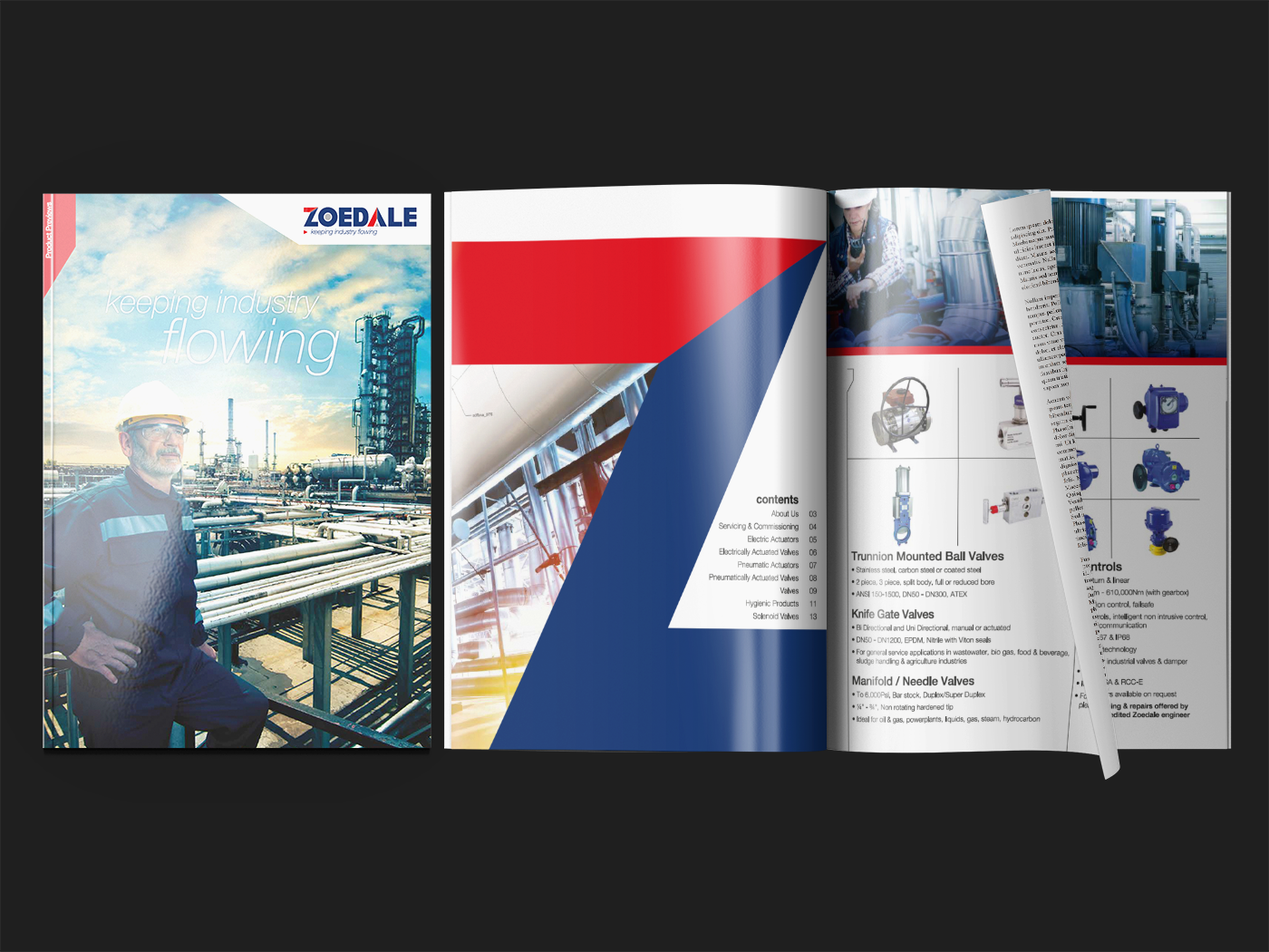 Zoedale brochure for portfolio | Shynee Web Design